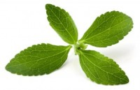 Stevia is an excellent sugar substitute that helps lower blood sugar